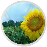 Sunflower Field Of Yellow Sunflowers By Jan Marvin Studios  Round Beach Towel
