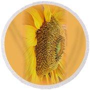 Sunflower Round Beach Towel by Kay Novy