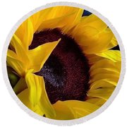 Round Beach Towel featuring the photograph Sunflower Sunny Yellow In New Orleans Louisiana by Michael Hoard