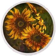 Sunflower Trio Round Beach Towel by Priscilla Burgers