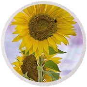 Sunflower With Colorful Evening Sky Round Beach Towel