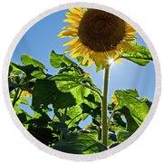 Sunflower With Sun Round Beach Towel