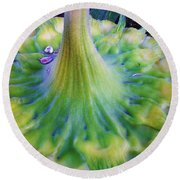 Round Beach Towel featuring the photograph Sunflower...moonside 1 by Daniel Thompson