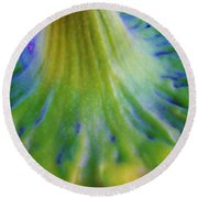 Round Beach Towel featuring the photograph Sunflower...moonside 2 by Daniel Thompson