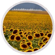 Round Beach Towel featuring the photograph Sunflowers And Airports by Ronda Kimbrow