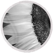 Sunflowers Beauty Black And White Round Beach Towel by Sandi OReilly