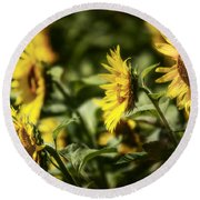 Round Beach Towel featuring the photograph Sunflowers In The Wind by Steven Sparks