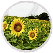 Sunflowers On A Hill Round Beach Towel