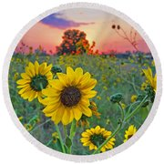 Sunflowers Sunset Round Beach Towel by Gary Holmes