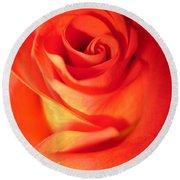 Sunkissed Orange Rose 10 Round Beach Towel