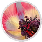 Sunlight Just Right Round Beach Towel