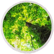 Sunlit Leaves Round Beach Towel