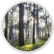 Sunlit Trees Round Beach Towel by Spikey Mouse Photography