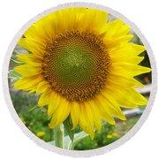 Bright Sunflower Happiness Round Beach Towel by Belinda Lee