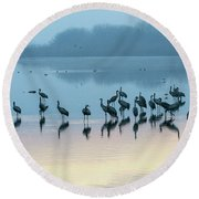 Sunrise Over The Hula Valley Israel 5 Round Beach Towel