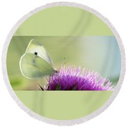 Sunrise In The Thistle Fields Round Beach Towel