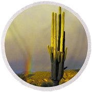 Round Beach Towel featuring the photograph Sunset Rainbow Cactus by John Haldane