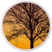 Sunset Tree Round Beach Towel