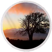 Sunset Tree In Maui Round Beach Towel by Venetia Featherstone-Witty
