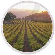 Round Beach Towel featuring the photograph Sunset, Vineyard, Napa Valley by Panoramic Images