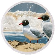 Surf 'n' Turf - Franklin's Gulls Round Beach Towel