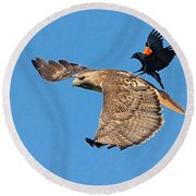 Surfer Bird  Round Beach Towel