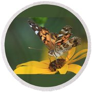 Susan Painted Lady Round Beach Towel by Reid Callaway