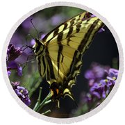 Swallowtail Butterfly On Lavender  Round Beach Towel