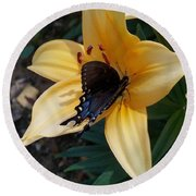 Round Beach Towel featuring the photograph Swallowtail On Asiatic Lily by Kathryn Meyer