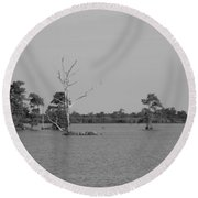 Round Beach Towel featuring the photograph Swamp Cypress Trees Black And White by Joseph Baril
