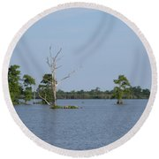 Round Beach Towel featuring the photograph Swamp Cypress Trees by Joseph Baril