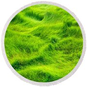 Round Beach Towel featuring the photograph Swamp Grass Abstract by Gary Slawsky