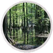 Swamp Land Round Beach Towel