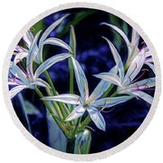 Round Beach Towel featuring the photograph Swamp Lilies by Steven Sparks