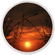 Round Beach Towel featuring the digital art Swamp Sunset  by Tim Fillingim