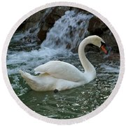 Swan A Swimming Round Beach Towel by Michele Myers