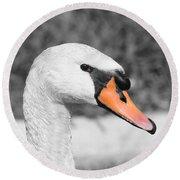 Swan Closeup Round Beach Towel