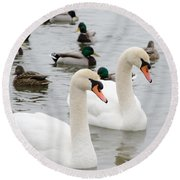Swan Couple Round Beach Towel