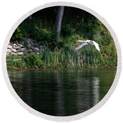 Round Beach Towel featuring the photograph Swan In Flight by Eleanor Abramson