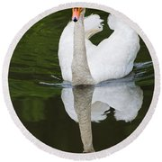 Round Beach Towel featuring the photograph Swan In Motion by Gary Slawsky