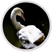 Round Beach Towel featuring the photograph Swan Lake by Deena Stoddard