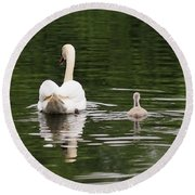 Round Beach Towel featuring the photograph Swan Song by Rona Black