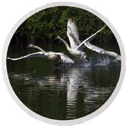 Swan Take-off Round Beach Towel