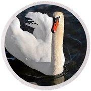 Swan With A Golden Neck Round Beach Towel by Susan Wiedmann