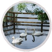 Swans In The Pond Round Beach Towel