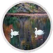 Round Beach Towel featuring the photograph Swans by Karen Silvestri
