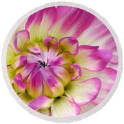 Sweet Dahlia Round Beach Towel