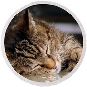 Sweet Dreams Round Beach Towel by Eunice Miller
