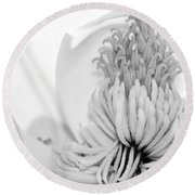 Sweet Magnolia Round Beach Towel