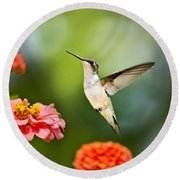 Round Beach Towel featuring the photograph Sweet Promise Hummingbird by Christina Rollo